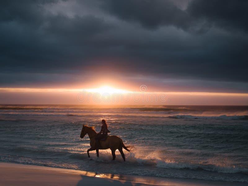 Weibliches Reitenpferd entlang dem Strand stockfotografie