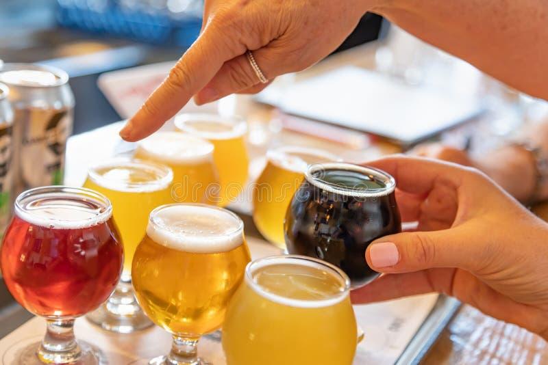 Weibliches Zeigen auf Glas Mikrogebräu-Bier von der Vielzahl lizenzfreies stockfoto