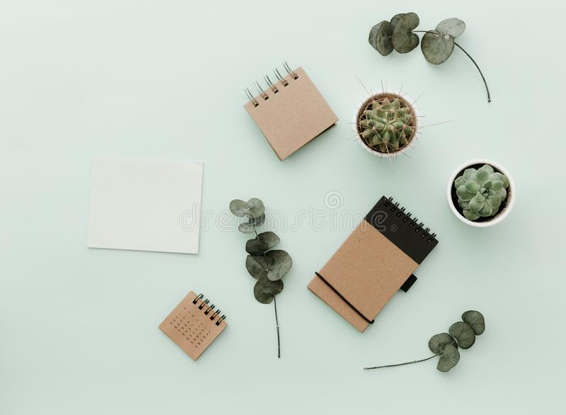 Weich neutrale angeredete Schreibtisch-Szenen mit Kaktus, Handwerk eco Notizbüchern und Grünblättern lizenzfreies stockfoto
