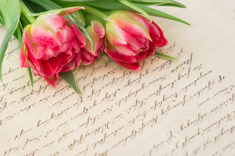 Weiche rosa Tulpen mit altem handgeschriebenem Liebesbrief lizenzfreies stockbild