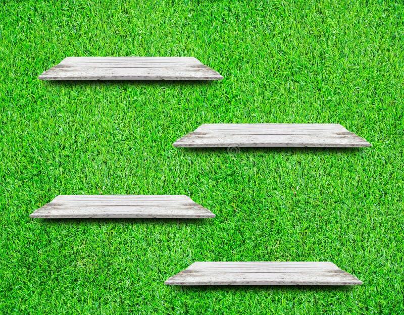 Weiche weiße hölzerne Regale mit neuem grünem Pflänzchenhintergrund stockbilder