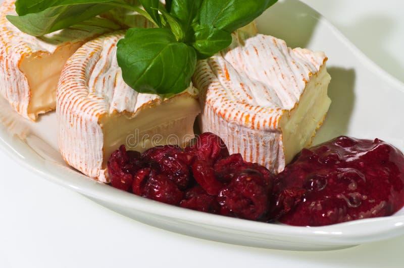 Weicher gereifter Käse lizenzfreie stockfotografie