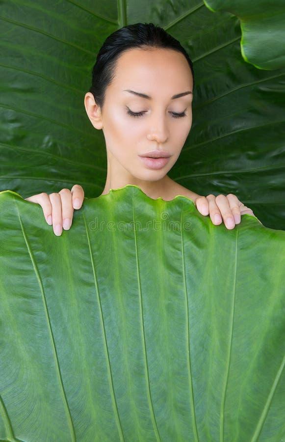 Weiches Bett von Blättern Porträt der schönen jungen Frau, die tr schaut lizenzfreies stockbild