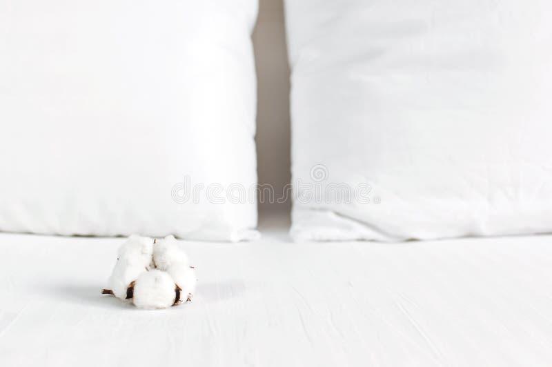 Weiches wei?es gestepptes Kissen und Baumwollblume im Bett auf dem Hintergrund der wei?en ledernen gesteppten Kopfende Sauberes K stockfoto