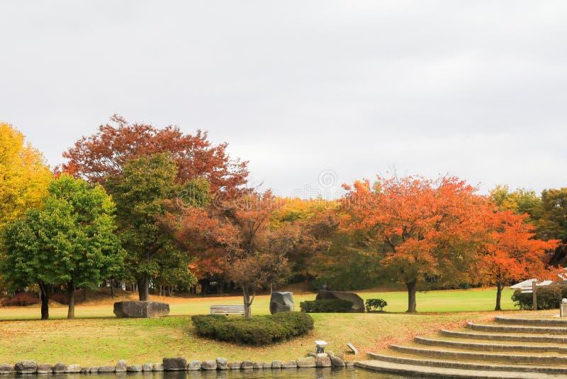 Weichzeichnungs- und Unschärfeart von Japan-Herbst, Obuse-Park, Nagano, lizenzfreie stockbilder