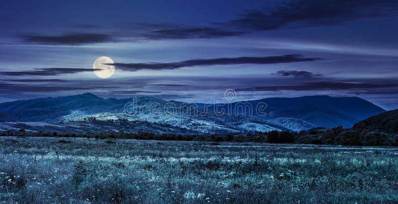 Weide dichtbij het dorp op helling bij nacht royalty-vrije stock afbeeldingen