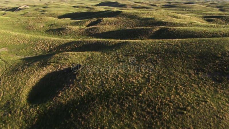 Weide, een prairie, pampas, een weiland, Noordelijk Australië royalty-vrije stock fotografie