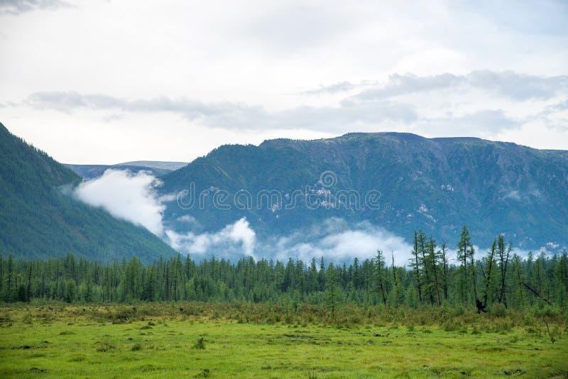 Weide en Berg in bewolkt weer Oostelijke Sayan Buryatia stock foto