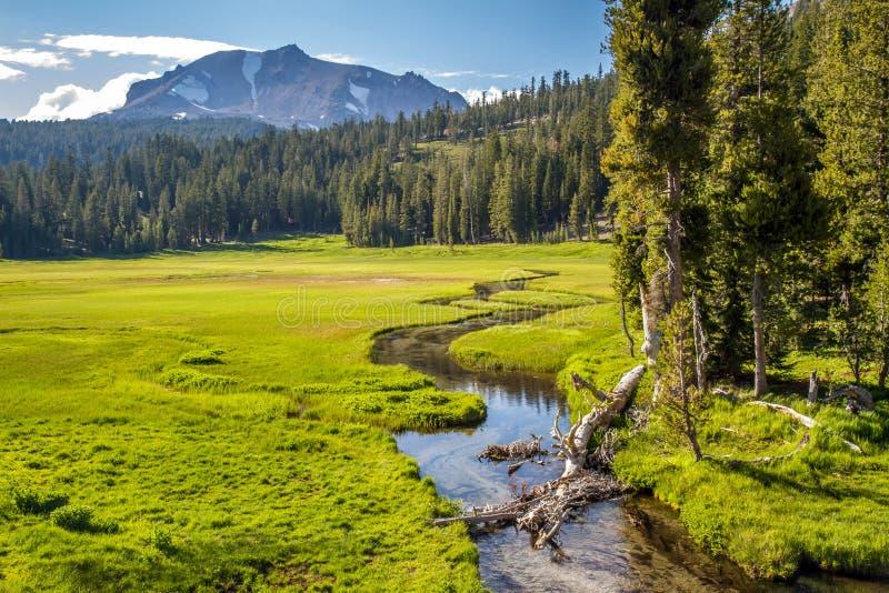 Weide in het Vulkanische Nationale Park van Lassen stock afbeelding