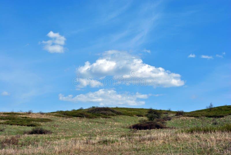 Weide met groen gras, heuvels met struiken, bewolkte hemel stock fotografie