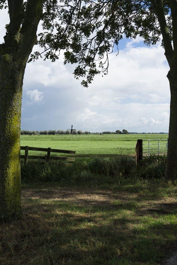 Weide met omheining, boomstam en molen van Bleskensgraaf in Alblasserwaard, Nederland royalty-vrije stock afbeeldingen