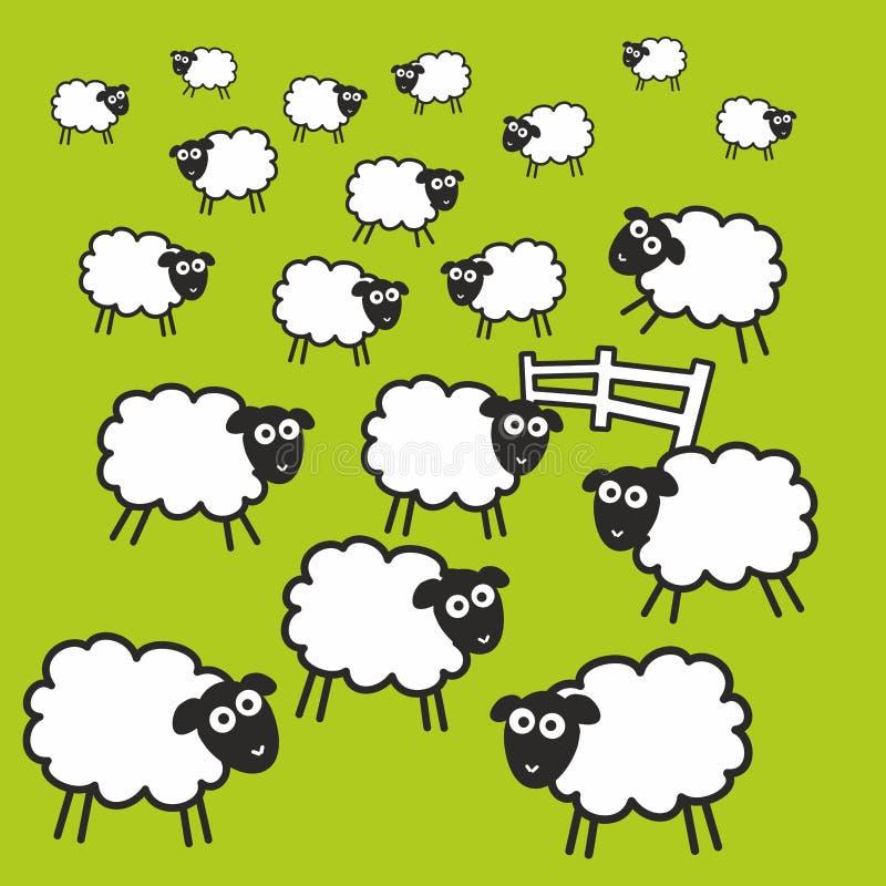 Weide mit dem Zaun und grünem Gras voll von den Schafen lizenzfreie abbildung