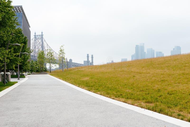 Weide in Roosevelt Island in de Stad van New York royalty-vrije stock afbeelding