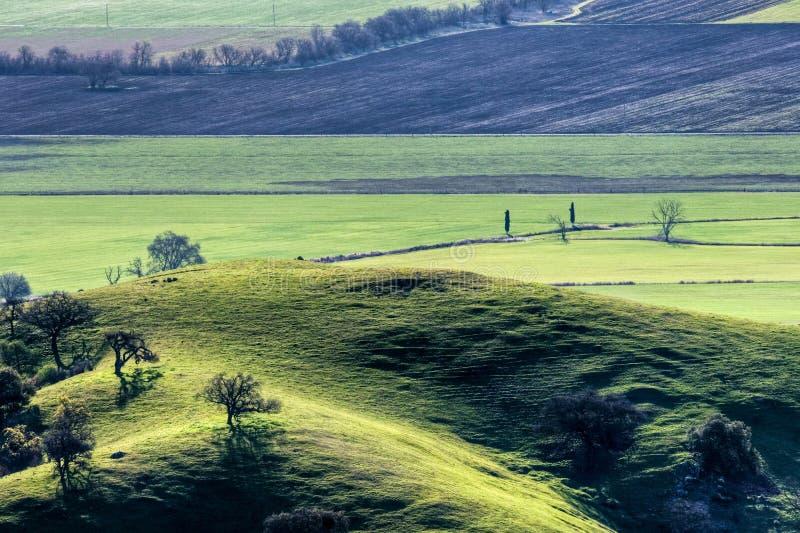 Weide und Feld lizenzfreies stockbild