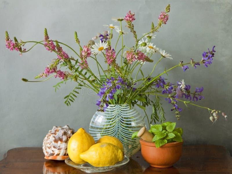 Weidebloemen in een vaas, shell, citroenen en kruiden royalty-vrije stock foto's