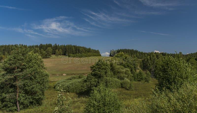 Weideland nahe Kraslice-Stadt in West-Böhmen lizenzfreies stockbild