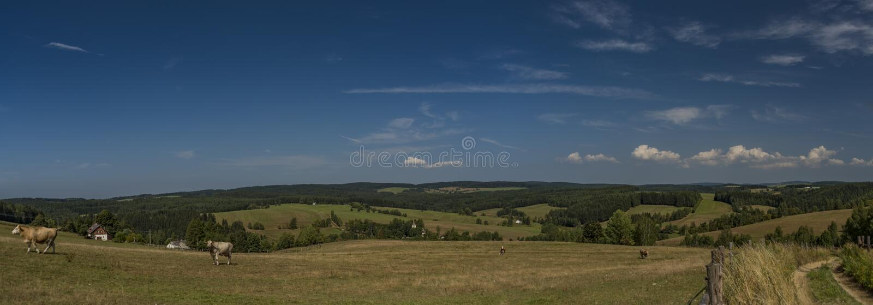 Weideland nahe Kraslice-Stadt in West-Böhmen lizenzfreies stockfoto