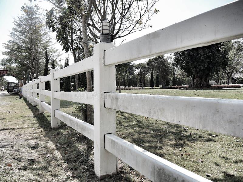 Weiden der Pferdebauernhöfe stockfoto