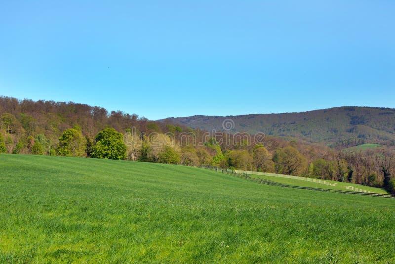 Weiden en heuvelsscène met blauwe hemel in historische stad riep Auerbach in Odenwald-bos in Duitsland stock foto's