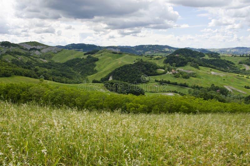 Weiden, groene heuvels en wolken stock foto