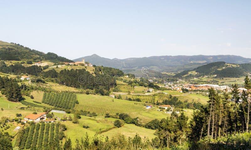 Weiden in landelijk dorp i royalty-vrije stock afbeeldingen