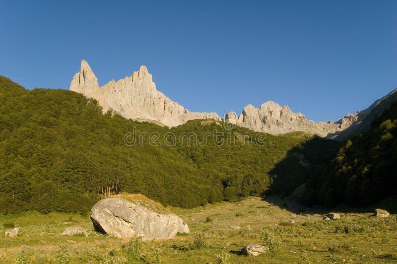Weiden lassen des Bereiches und des Fluss-Steins in den französischen Pyrenees stockfoto