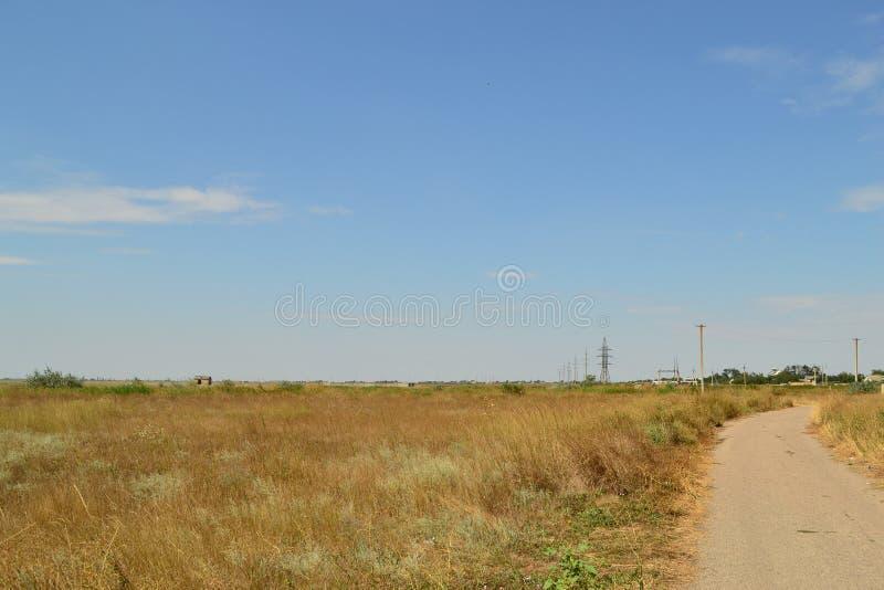 Weiden van het Gebied van Kherson, de Oekraïne stock foto's
