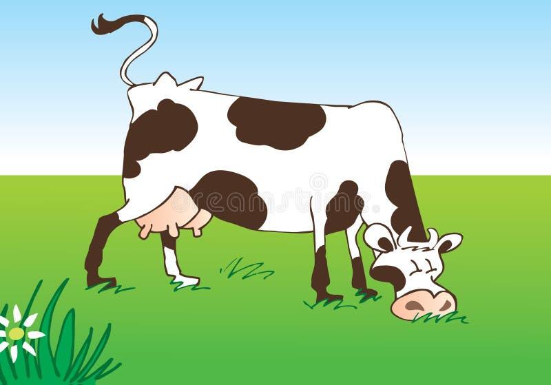 Weidende koe op weide royalty-vrije stock afbeelding