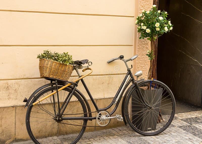 Weidenkorb des schwarzen Fahrrades mit grüner Zusammensetzung auf dem Stamm, der an der beige Wand sich lehnt stockfotos