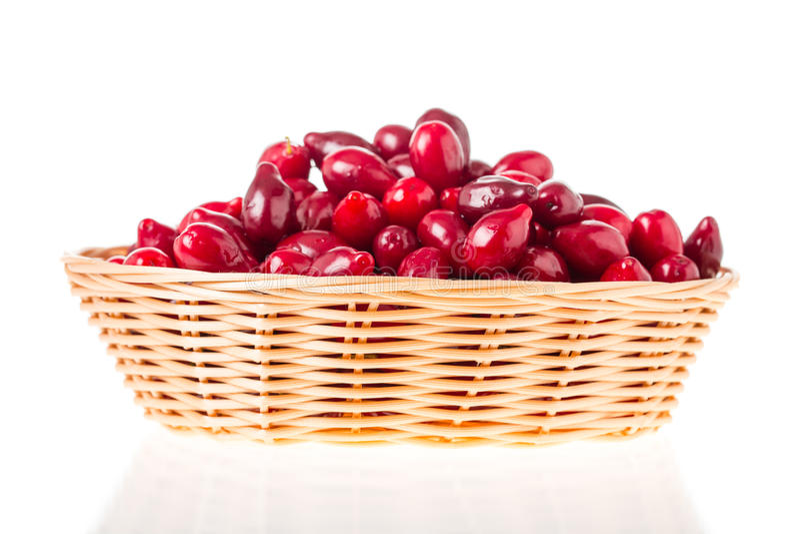 Weidenkorb mit Beeren des roten Hartriegels lizenzfreie stockfotografie