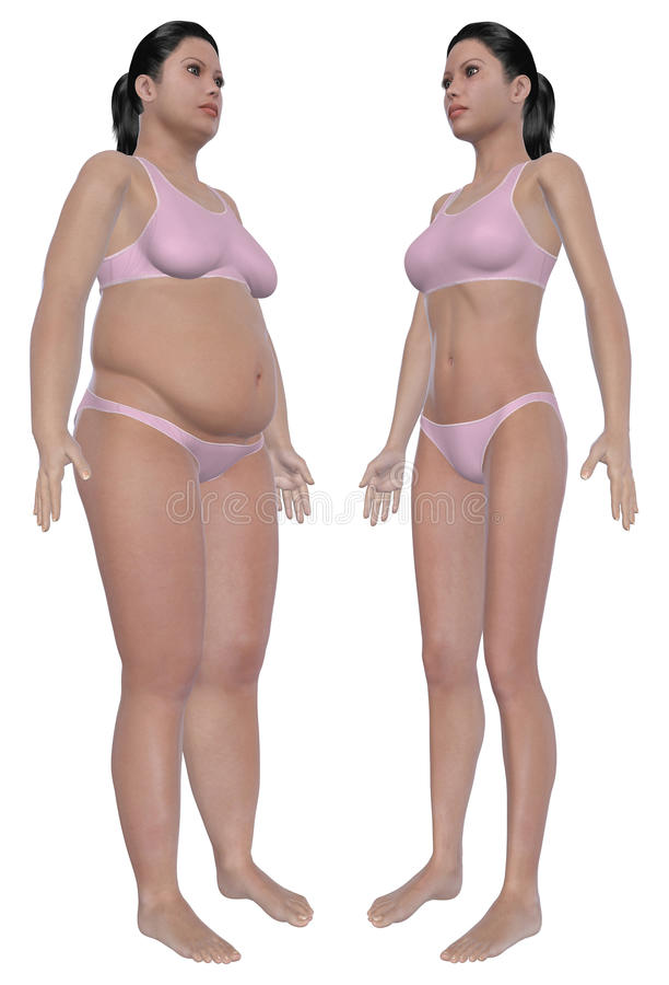 Download Weight Loss Before And After Angled Front View Stock Illustration - Image: 26872974