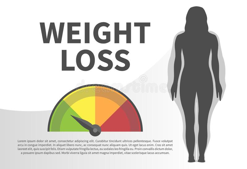 Weight Loss Infographic Vector Illustration with Woman Silhouette from Normal Healthy to Fat Weight stock illustration