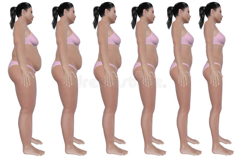 Weight Loss Progression Side View Royalty Free Stock Photos
