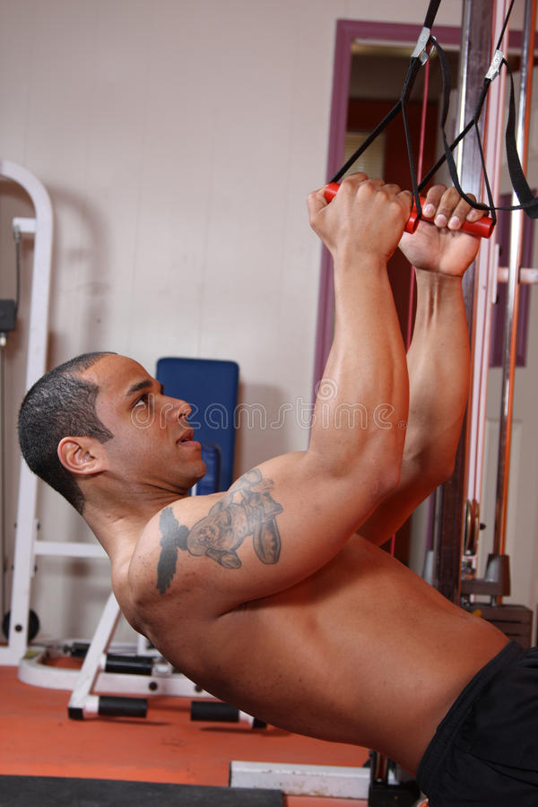Weight Training At The Gym Stock Photos