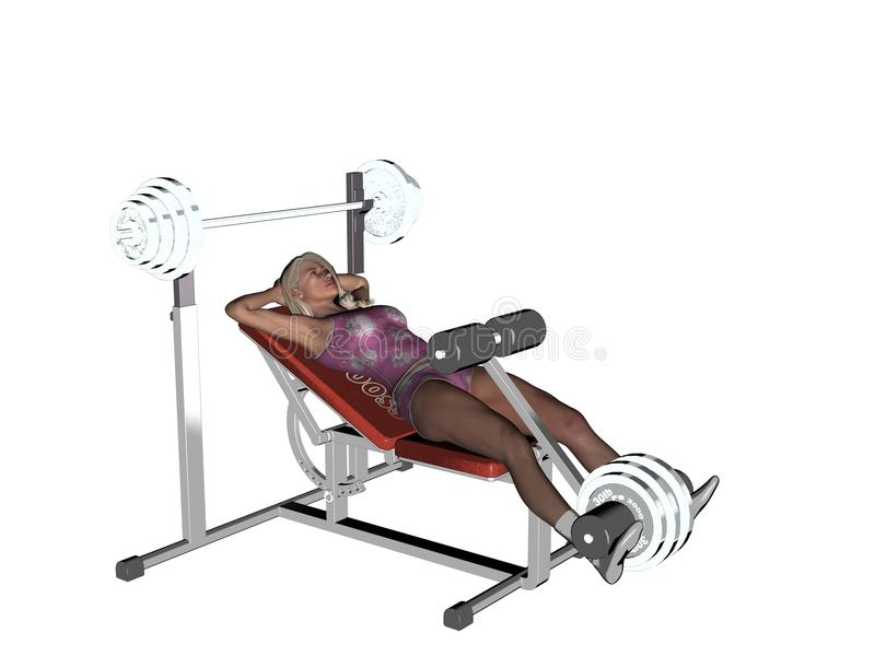 Weightlifter ławka ilustracji