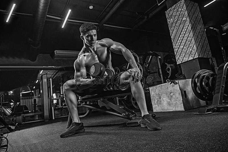 Weightlifter muscular joven del levantamiento de pesas del deportista en el gimnasio encendido fotografía de archivo libre de regalías