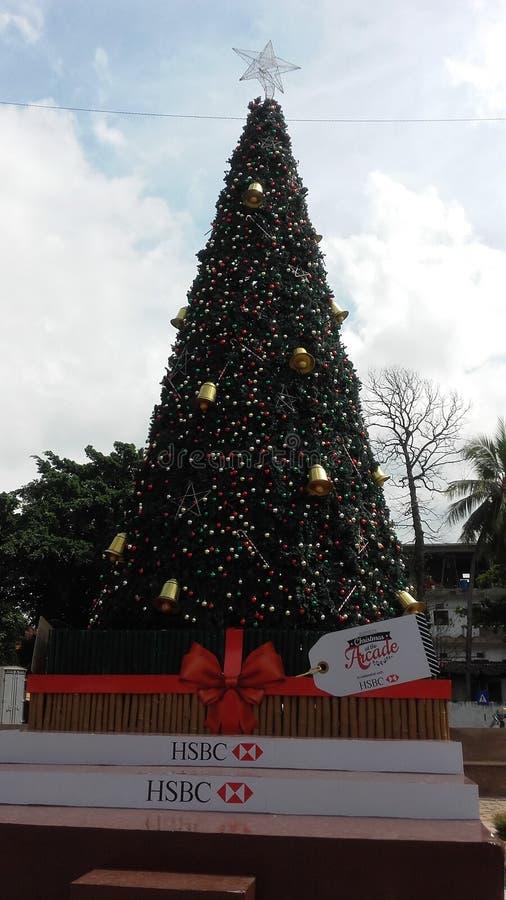 Weihnachten auf Sri Lanka stockfoto