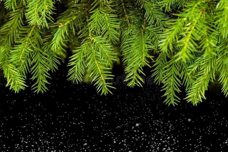 Weihnachten baum, hintergrund, vinter, neuesjahr