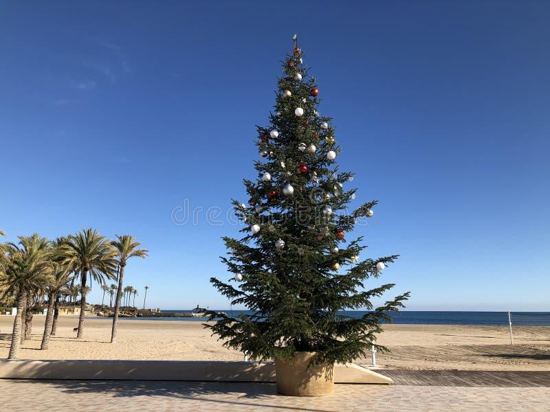 Weihnachten in einem heißen Mittelmeerklima lizenzfreie stockbilder