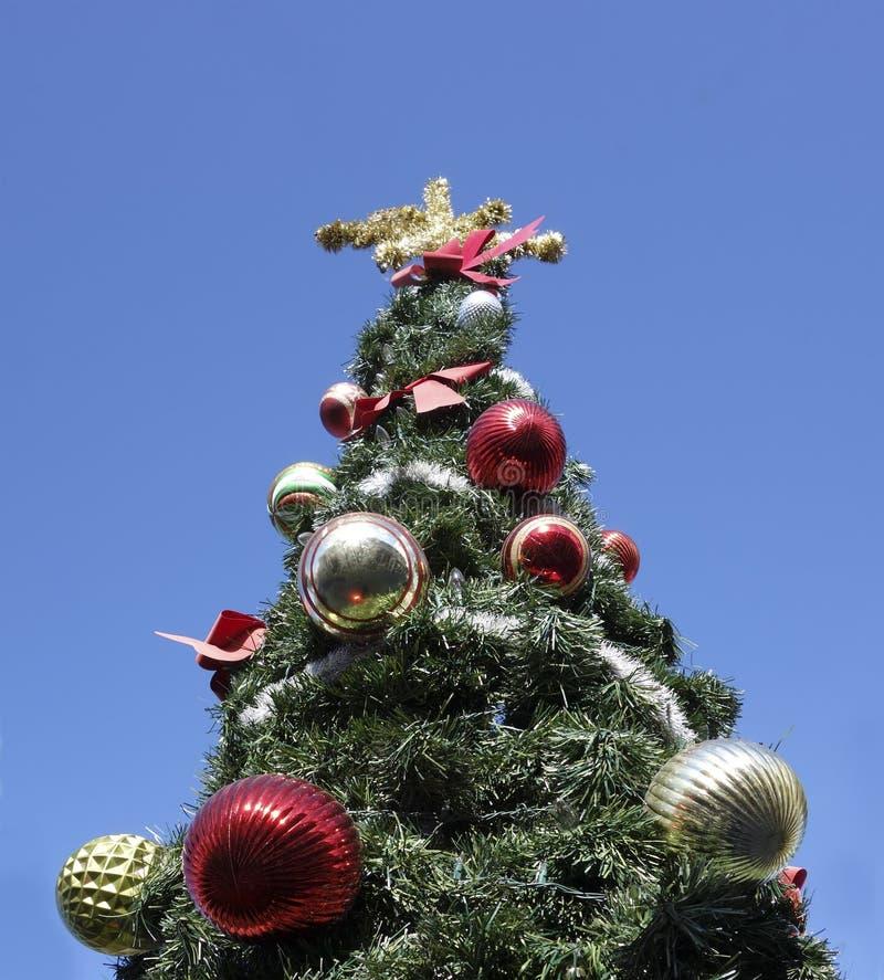 Weihnachten im Freien lizenzfreies stockfoto