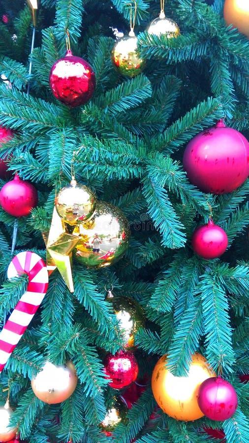 Weihnachten ist die magischste Jahreszeit Let's-Anteil die Magie mit einander diese gesamte Jahreszeit und im neuen Jahr stockfoto