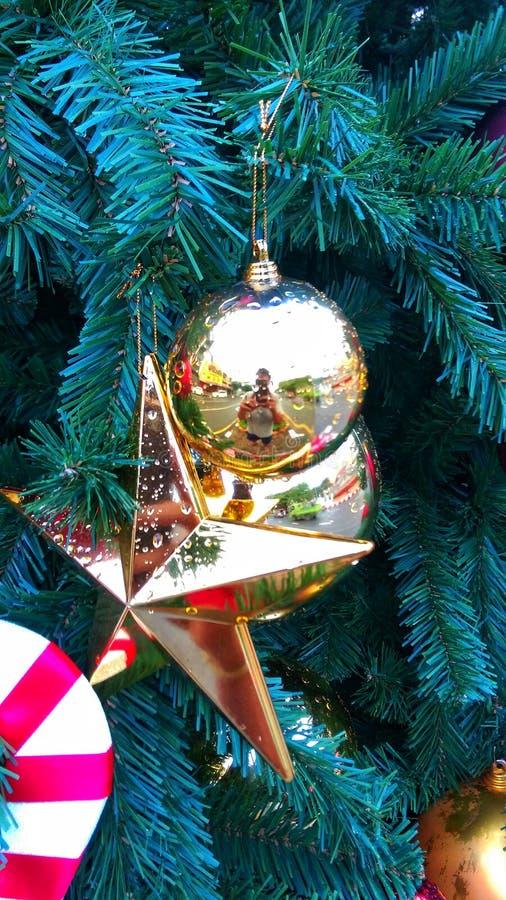 Weihnachten ist die magischste Jahreszeit Let's-Anteil die Magie mit einander diese gesamte Jahreszeit und im neuen Jahr lizenzfreie stockbilder