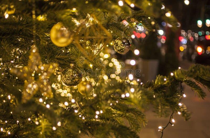 Weihnachtsbaum England.Weihnachtsbaum Reflexion Funchal Madeira Portugal Stockbild