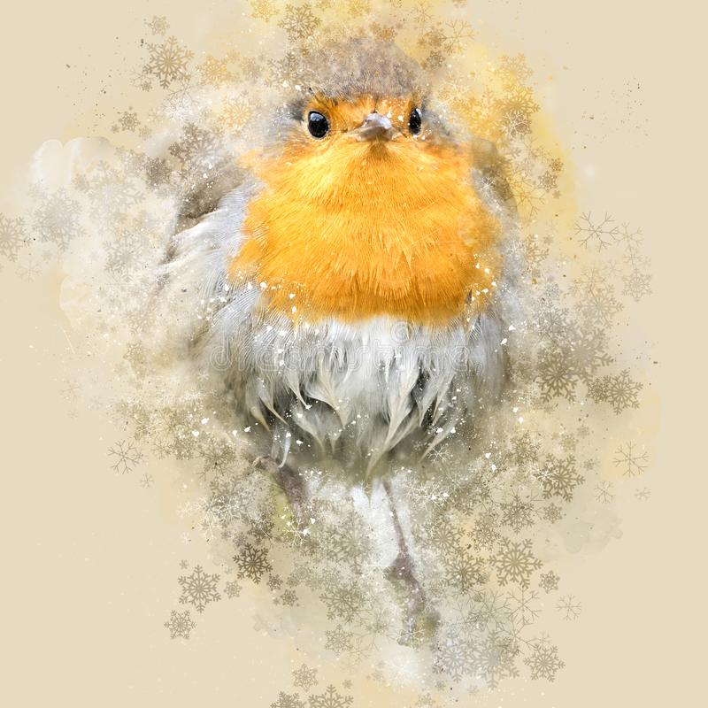 Weihnachten Robin, Digital-Watercolour u. Fotografie vektor abbildung