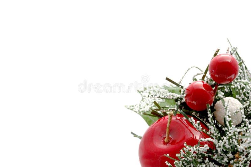 Weihnachtsäpfel stockfotografie