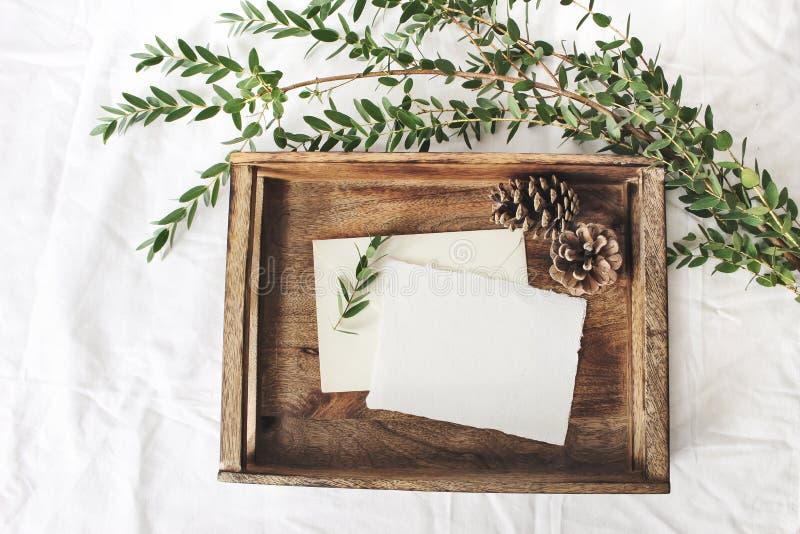 Weihnachts- oder Winterhochzeitsmodellszene Leere Baumwollpapier-Grußkarten, alter hölzerner Behälter, Kiefernkegel und Grün stockbilder