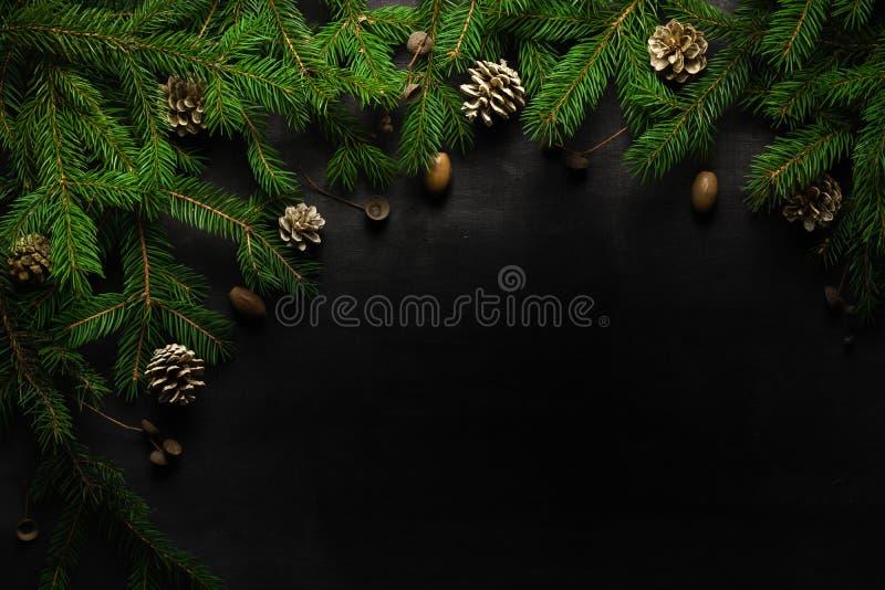 Weihnachts- und des neuen Jahreshintergrund Weihnachtsbaumast auf einem schwarzen Hintergrund Kegel und Pelzbaumspielwaren Ansich lizenzfreie stockbilder