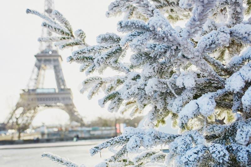 Weihnachtsbaum bedeckt mit Schnee nahe Eiffelturm lizenzfreie stockfotos