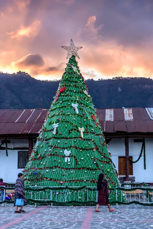 Weihnachtsbaum bei Sonnenuntergang, See Atitlan, Guatemala lizenzfreies stockfoto