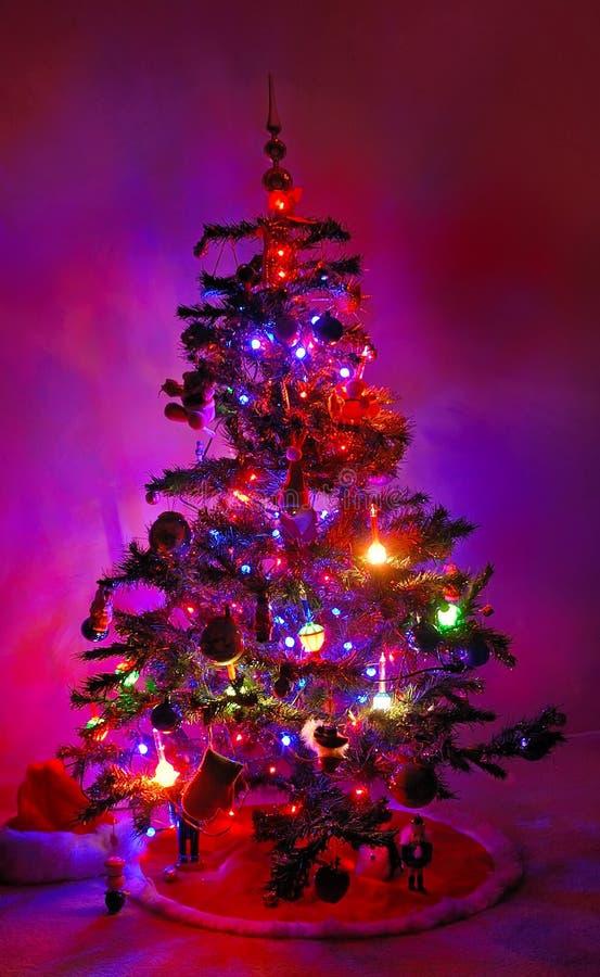 Weihnachtsbaum, der in die Dunkelheit glüht stockbild